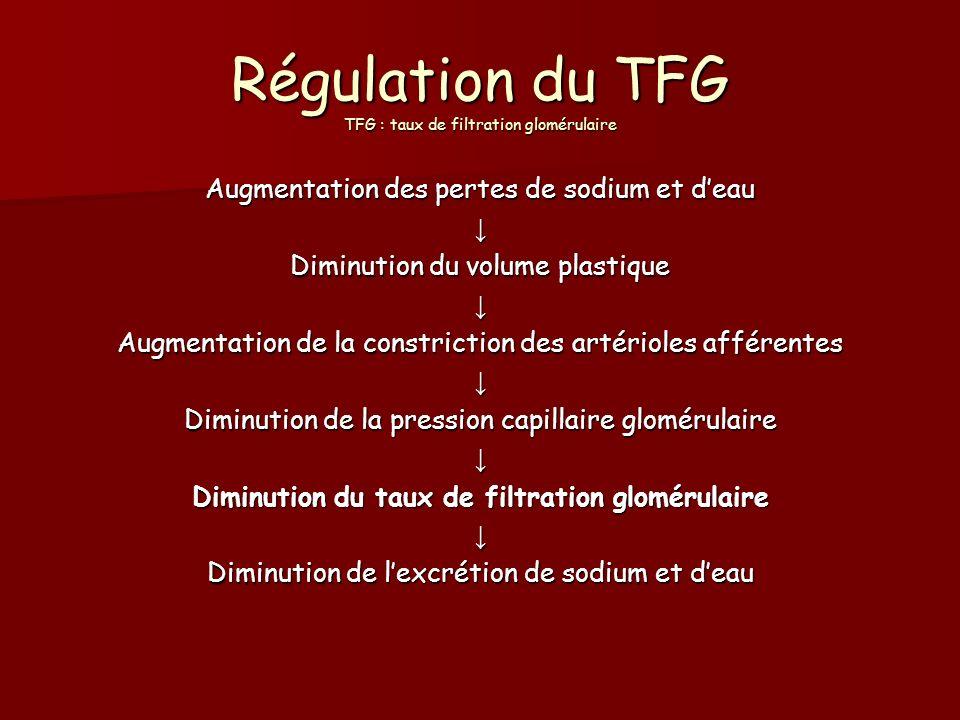 Régulation du TFG TFG : taux de filtration glomérulaire Augmentation des pertes de sodium et deau Diminution du volume plastique Augmentation de la co