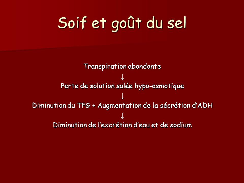 Soif et goût du sel Transpiration abondante Perte de solution salée hypo-osmotique Diminution du TFG + Augmentation de la sécrétion dADH Diminution de