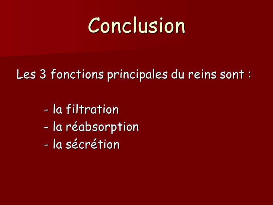Conclusion Les 3 fonctions principales du reins sont : - la filtration - la réabsorption - la sécrétion