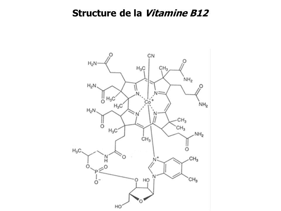 Structure de certains Métallobiosites Octaèdre Tétraèdre Pyramide à base carrée Bipyramide à base triangulaire carré plan Transferrine Vitamine B12 Anhydrase carbonique II Hémoglobine-O 2 Hémoglobine-H 2 O Hémoglobine