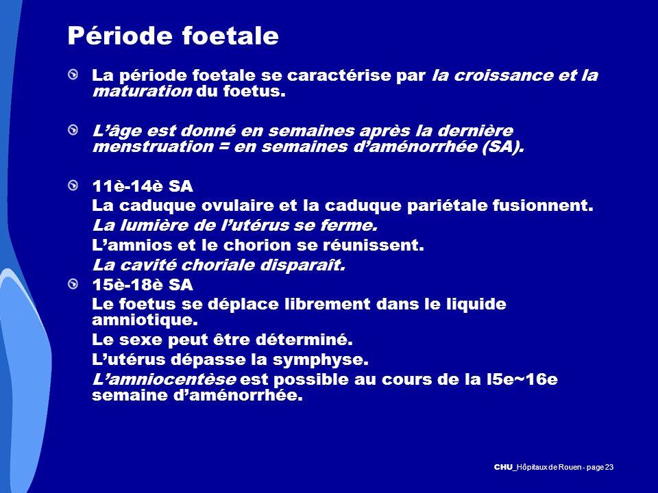 CHU _Hôpitaux de Rouen - page 23 Période foetale La période foetale se caractérise par la croissance et la maturation du foetus. Lâge est donné en sem