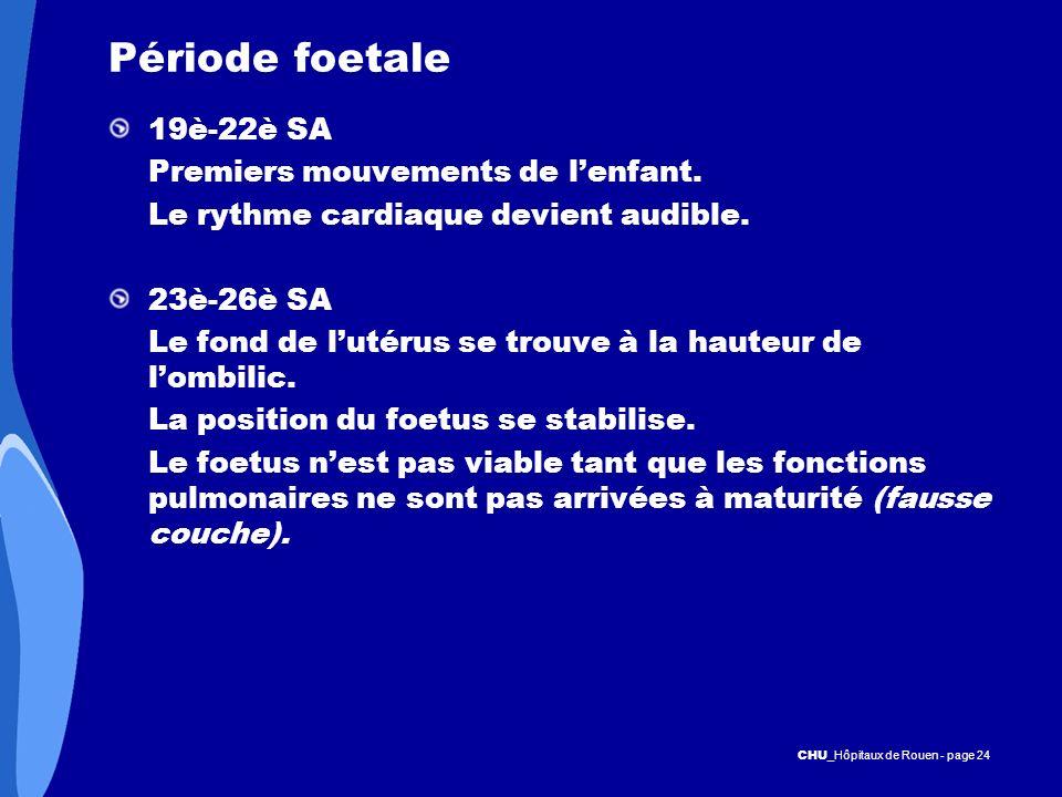CHU _Hôpitaux de Rouen - page 24 Période foetale 19è-22è SA Premiers mouvements de lenfant. Le rythme cardiaque devient audible. 23è-26è SA Le fond de