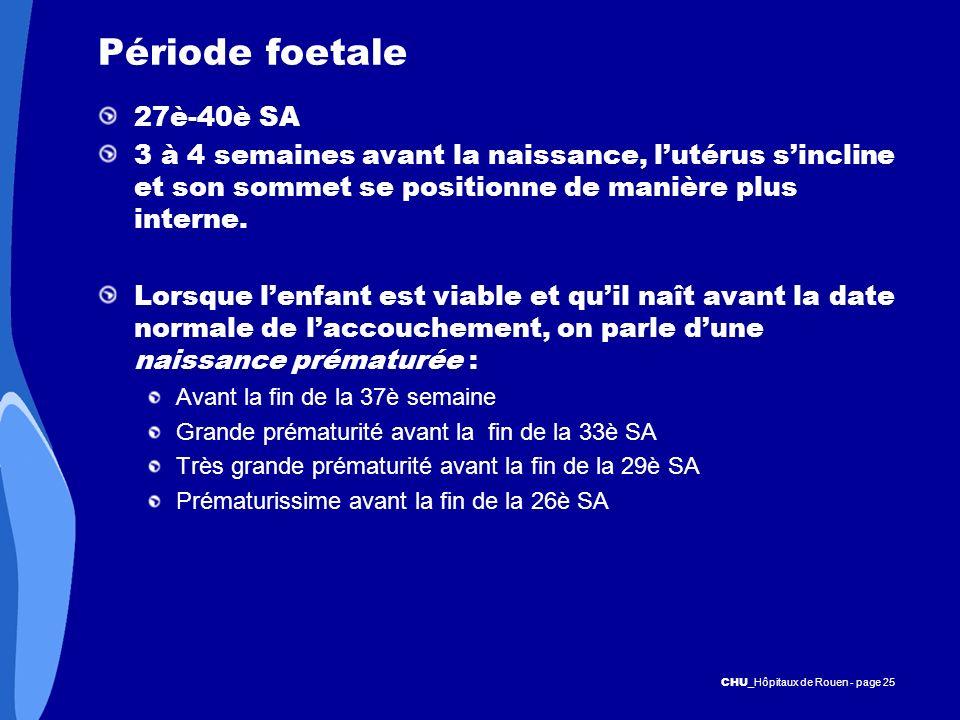 CHU _Hôpitaux de Rouen - page 25 Période foetale 27è-40è SA 3 à 4 semaines avant la naissance, lutérus sincline et son sommet se positionne de manière