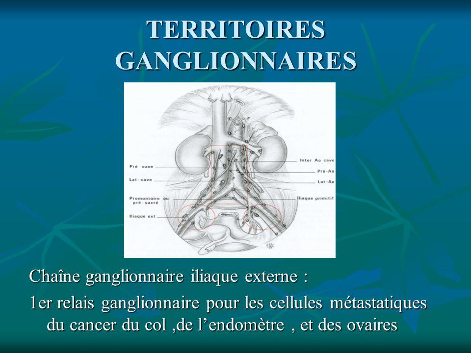 TERRITOIRES GANGLIONNAIRES Chaîne ganglionnaire iliaque externe : 1er relais ganglionnaire pour les cellules métastatiques du cancer du col,de lendomè