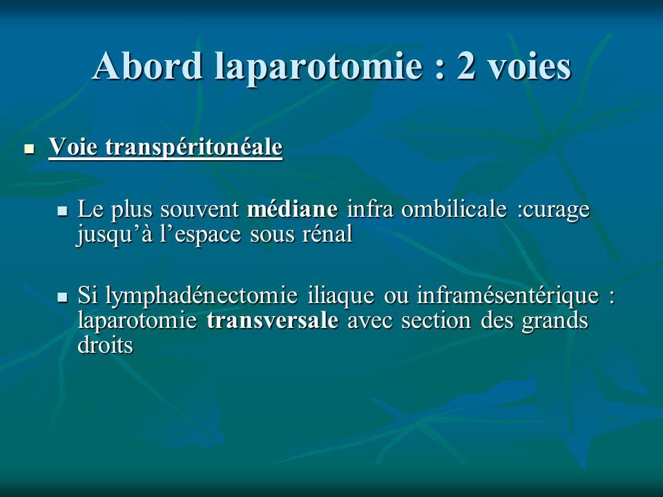 Abord laparotomie : 2 voies Voie transpéritonéale Voie transpéritonéale Le plus souvent médiane infra ombilicale :curage jusquà lespace sous rénal Le