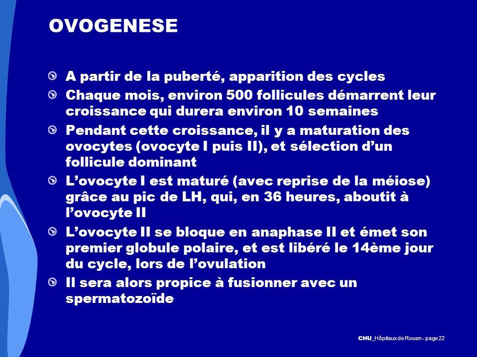 CHU _Hôpitaux de Rouen - page 22 OVOGENESE A partir de la puberté, apparition des cycles Chaque mois, environ 500 follicules démarrent leur croissance