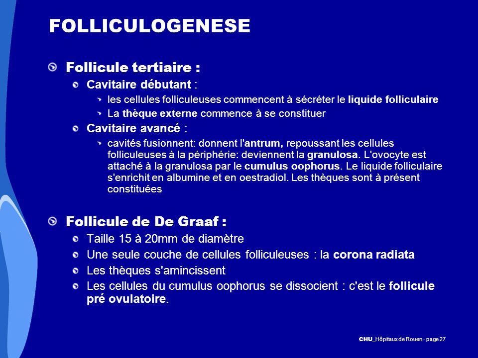 CHU _Hôpitaux de Rouen - page 27 FOLLICULOGENESE Follicule tertiaire : Cavitaire débutant : les cellules folliculeuses commencent à sécréter le liquid