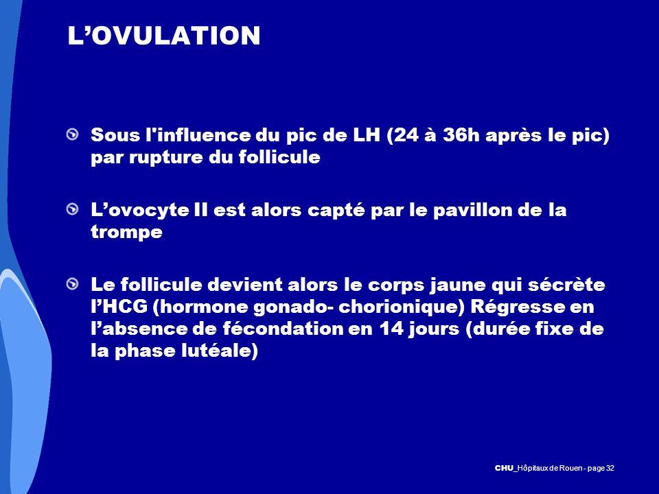 CHU _Hôpitaux de Rouen - page 32 LOVULATION Sous l'influence du pic de LH (24 à 36h après le pic) par rupture du follicule Lovocyte II est alors capté