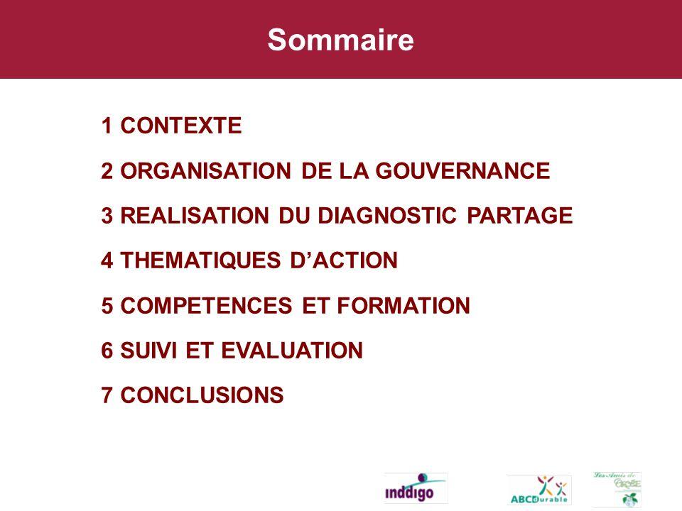 Sommaire 1 CONTEXTE 2 ORGANISATION DE LA GOUVERNANCE 3 REALISATION DU DIAGNOSTIC PARTAGE 4 THEMATIQUES DACTION 5 COMPETENCES ET FORMATION 6 SUIVI ET EVALUATION 7 CONCLUSIONS