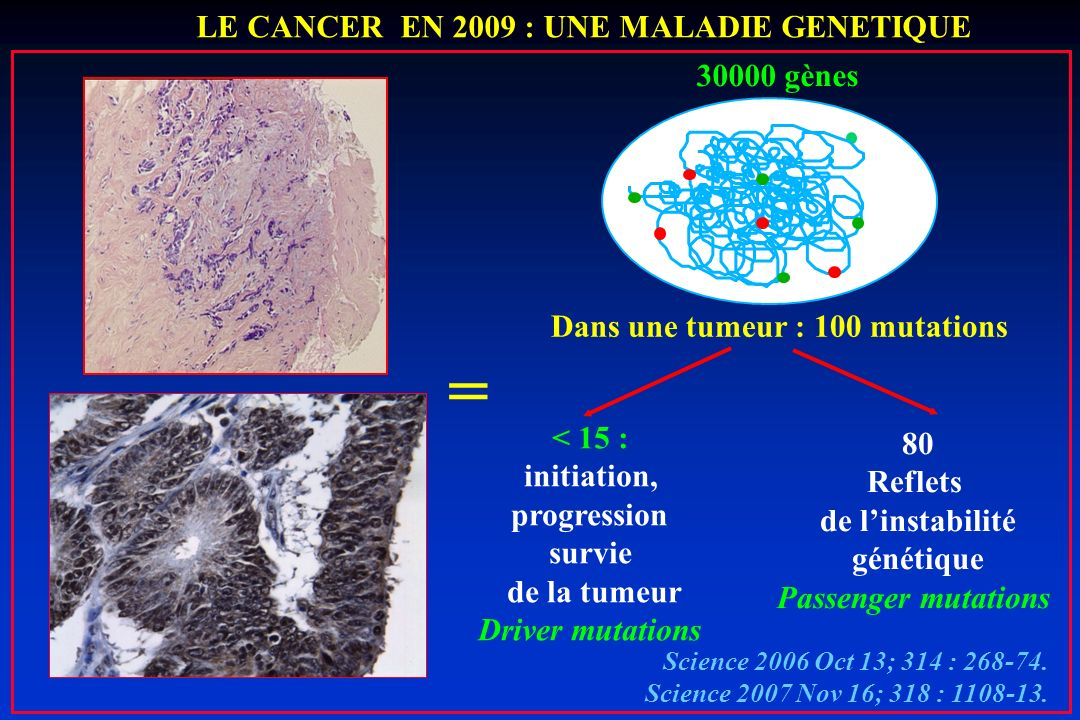 Dans une tumeur : 100 mutations = LE CANCER EN 2009 : UNE MALADIE GENETIQUE 30000 gènes Science 2006 Oct 13; 314 : 268-74. Science 2007 Nov 16; 318 :