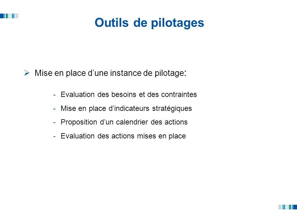 Outils de pilotages Mise en place dune instance de pilotage : -Evaluation des besoins et des contraintes -Mise en place dindicateurs stratégiques -Pro