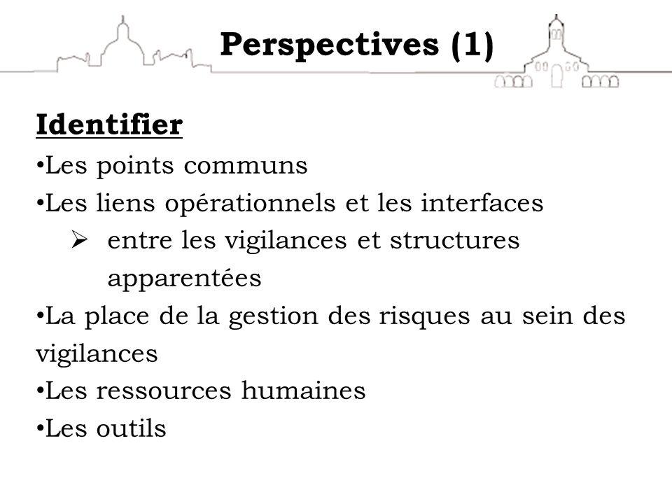 Perspectives (1) Identifier Les points communs Les liens opérationnels et les interfaces entre les vigilances et structures apparentées La place de la
