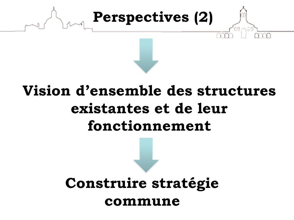 Perspectives (2) Vision densemble des structures existantes et de leur fonctionnement Construire stratégie commune