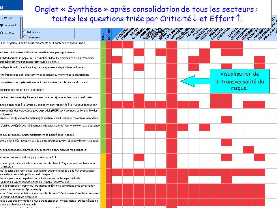 25 OCT 2012ARCHIMED & GDR PECM11 Onglet « Synthèse » après consolidation de tous les secteurs : toutes les questions triée par Criticité et Effort. Vi