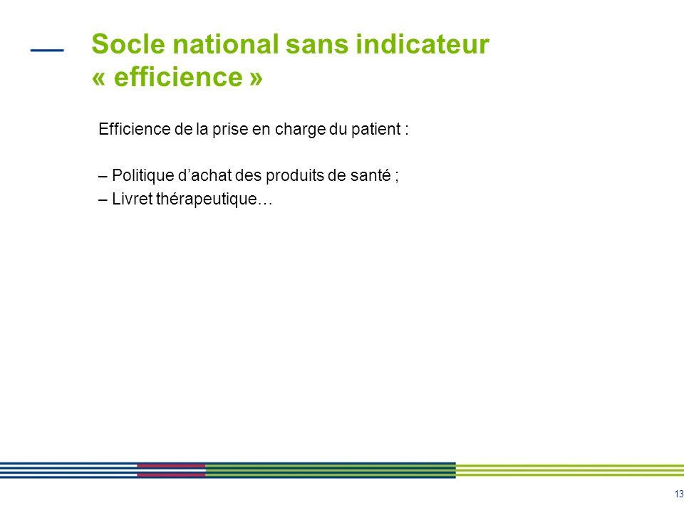 13 Socle national sans indicateur « efficience » Efficience de la prise en charge du patient : – Politique dachat des produits de santé ; – Livret thérapeutique…