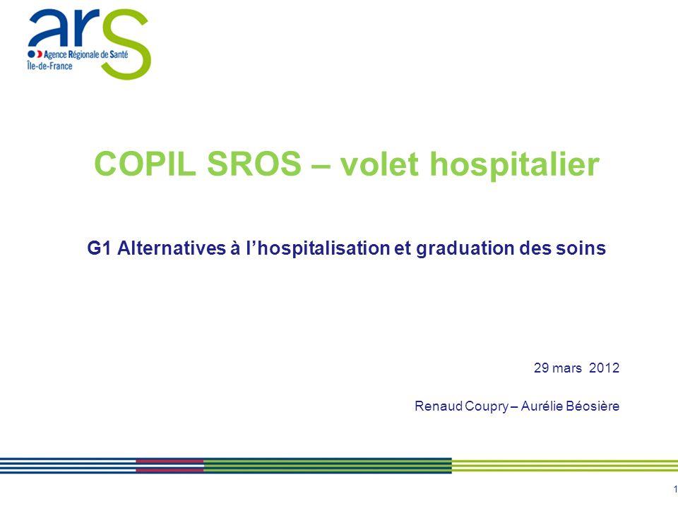 1 COPIL SROS – volet hospitalier G1 Alternatives à lhospitalisation et graduation des soins 29 mars 2012 Renaud Coupry – Aurélie Béosière