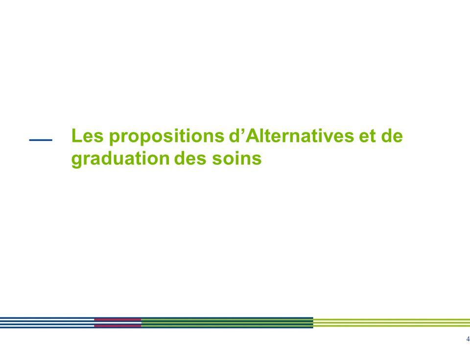 4 Les propositions dAlternatives et de graduation des soins