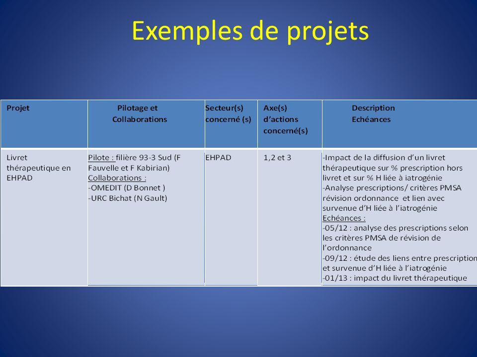 Critères de révision de lordonnance HAS (PMSA) 491 ordonnances janvier 2012 9 EHPAD filière 93-3 Sud (1 PUI) Bernard, Fauvelle, Kabirian et al 1.Est structurée par domaine pathologique30,72% 2.