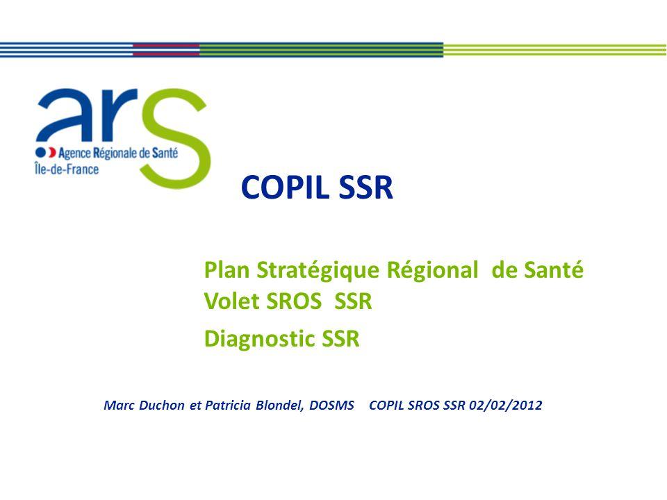 COPIL SSR Plan Stratégique Régional de Santé Volet SROS SSR Diagnostic SSR Marc Duchon et Patricia Blondel, DOSMS COPIL SROS SSR 02/02/2012