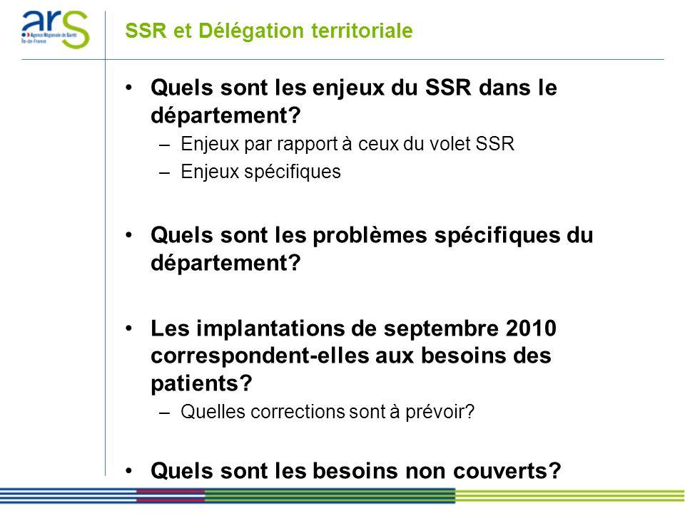 SSR et Délégation territoriale Quels sont les enjeux du SSR dans le département? –Enjeux par rapport à ceux du volet SSR –Enjeux spécifiques Quels son