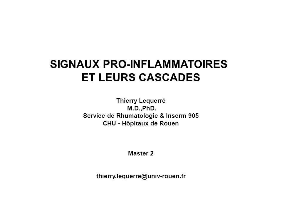 SIGNAUX PRO-INFLAMMATOIRES ET LEURS CASCADES Thierry Lequerré M.D.,PhD. Service de Rhumatologie & Inserm 905 CHU - Hôpitaux de Rouen Master 2 thierry.
