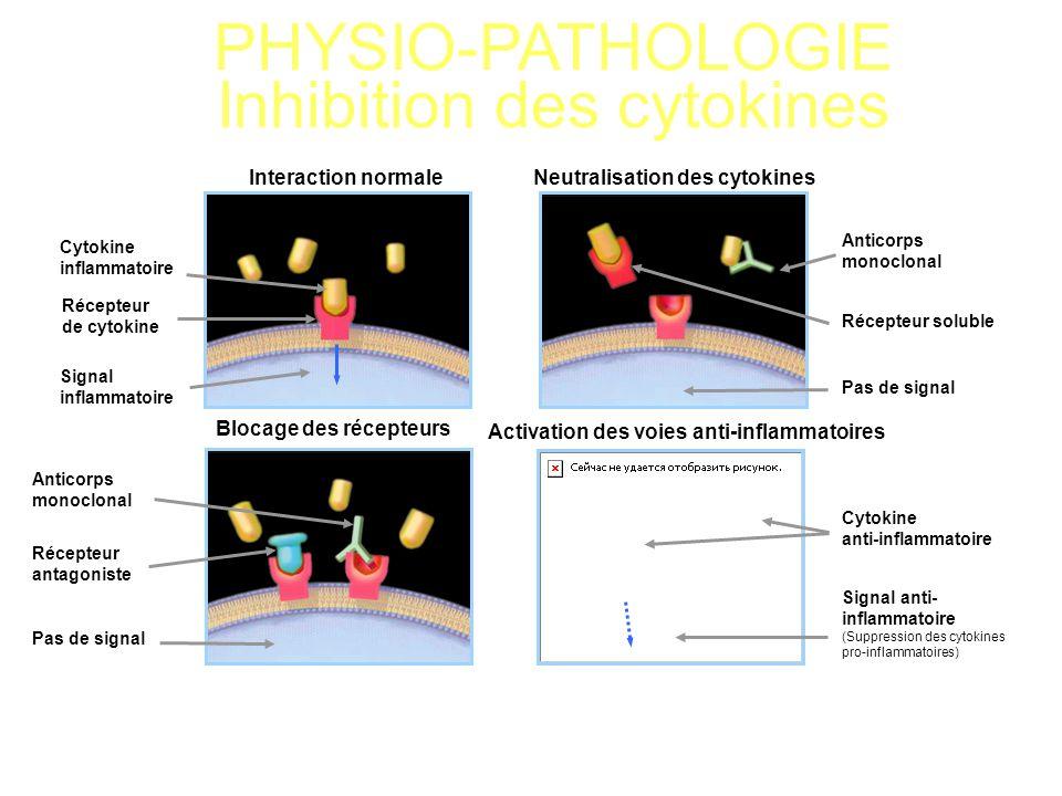 PHYSIO-PATHOLOGIE Inhibition des cytokines Cytokine inflammatoire Interaction normaleNeutralisation des cytokines Blocage des récepteurs Activation de