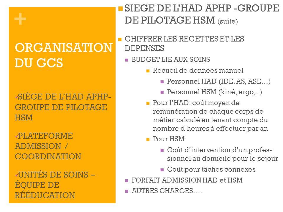 + SIEGE DE LHAD APHP -GROUPE DE PILOTAGE HSM (suite) CHIFFRER LES RECETTES ET LES DEPENSES BUDGET LIE AUX SOINS Recueil de données manuel Personnel HA