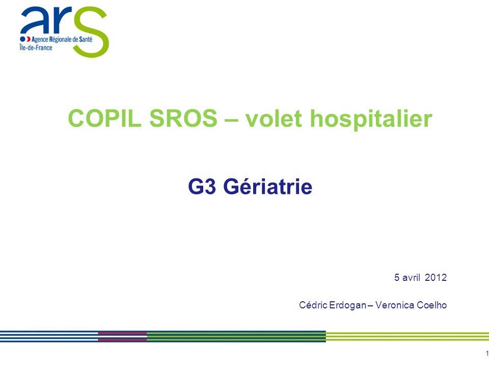 1 COPIL SROS – volet hospitalier G3 Gériatrie 5 avril 2012 Cédric Erdogan – Veronica Coelho