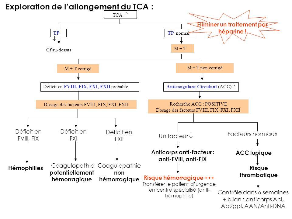 Exploration de lallongement du TCA : TP TP normal TCA Cf au-dessus M + T Déficit en FVIII, FIX, FXI, FXII probable M + T corrigé M + T non corrigé Anticoagulant Circulant (ACC) .