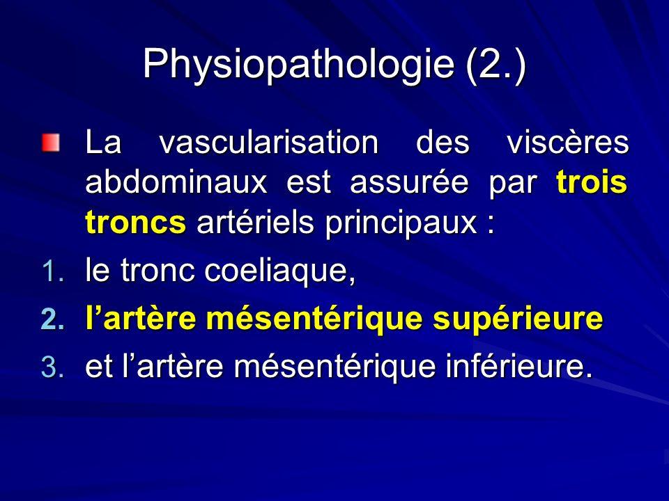 Physiopathologie (2.) La vascularisation des viscères abdominaux est assurée par trois troncs artériels principaux : 1. le tronc coeliaque, 2. lartère