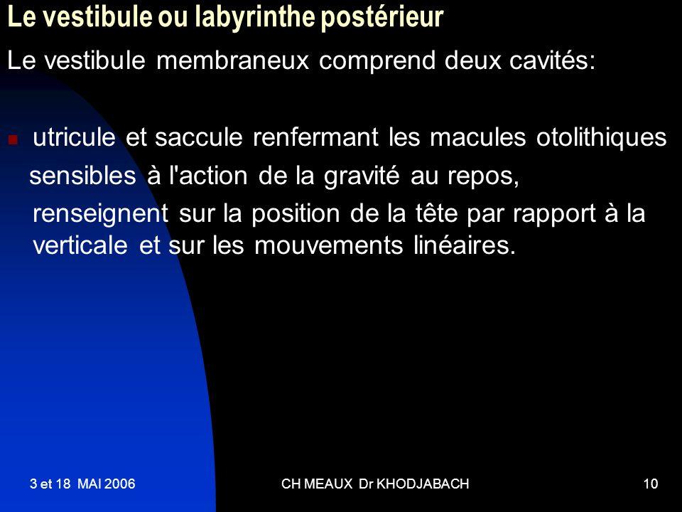 3 et 18 MAI 2006CH MEAUX Dr KHODJABACH10 Le vestibule ou labyrinthe postérieur Le vestibule membraneux comprend deux cavités: utricule et saccule renf