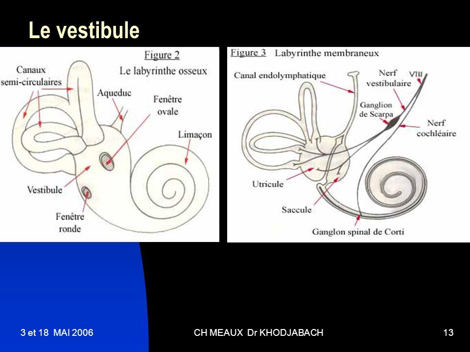 3 et 18 MAI 2006CH MEAUX Dr KHODJABACH13 Le vestibule