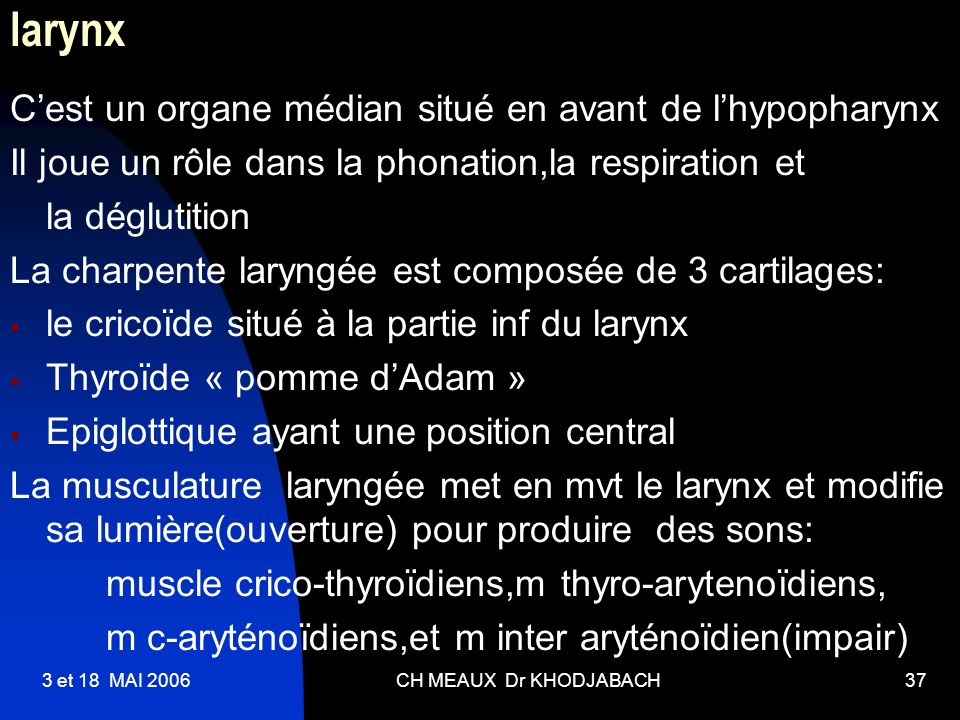 3 et 18 MAI 2006CH MEAUX Dr KHODJABACH37 larynx Cest un organe médian situé en avant de lhypopharynx Il joue un rôle dans la phonation,la respiration