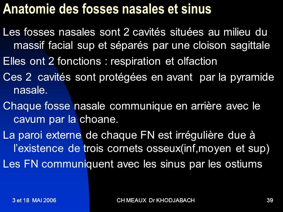 3 et 18 MAI 2006CH MEAUX Dr KHODJABACH39 Anatomie des fosses nasales et sinus Les fosses nasales sont 2 cavités situées au milieu du massif facial sup