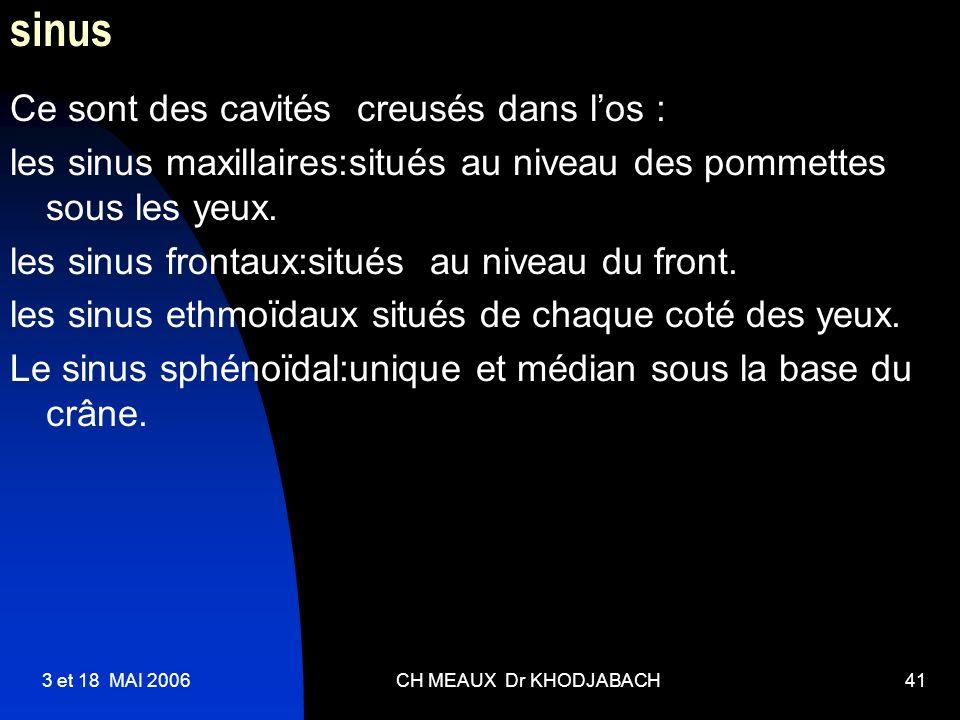 3 et 18 MAI 2006CH MEAUX Dr KHODJABACH41 sinus Ce sont des cavités creusés dans los : les sinus maxillaires:situés au niveau des pommettes sous les ye