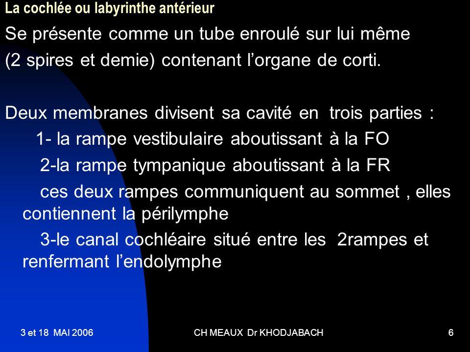 3 et 18 MAI 2006CH MEAUX Dr KHODJABACH6 La cochlée ou labyrinthe antérieur Se présente comme un tube enroulé sur lui même (2 spires et demie) contenan
