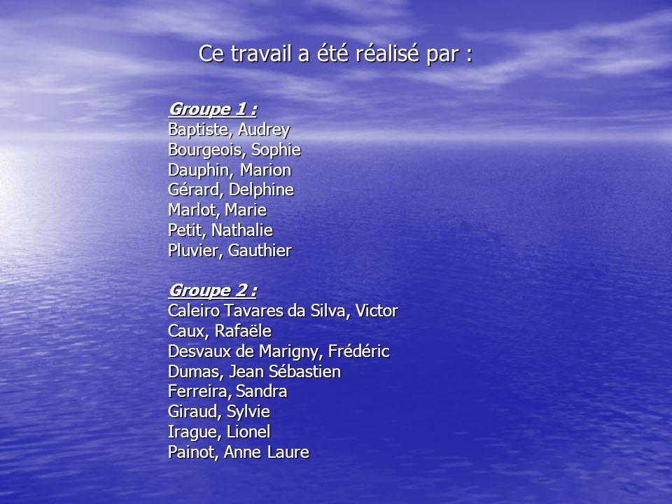 Ce travail a été réalisé par : Groupe 1 : Baptiste, Audrey Bourgeois, Sophie Dauphin, Marion Gérard, Delphine Marlot, Marie Petit, Nathalie Pluvier, G