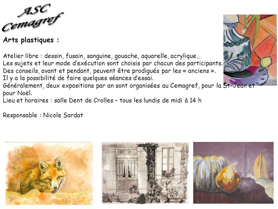 Arts plastiques : Atelier libre : dessin, fusain, sanguine, gouache, aquarelle, acrylique… Les sujets et leur mode dexécution sont choisis par chacun