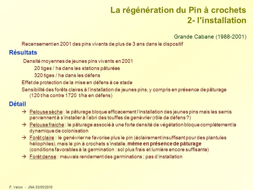 F. Véron - JNA 03/05/2010 La régénération du Pin à crochets 2- l'installation Grande Cabane (1988-2001) Recensement en 2001 des pins vivants de plus d