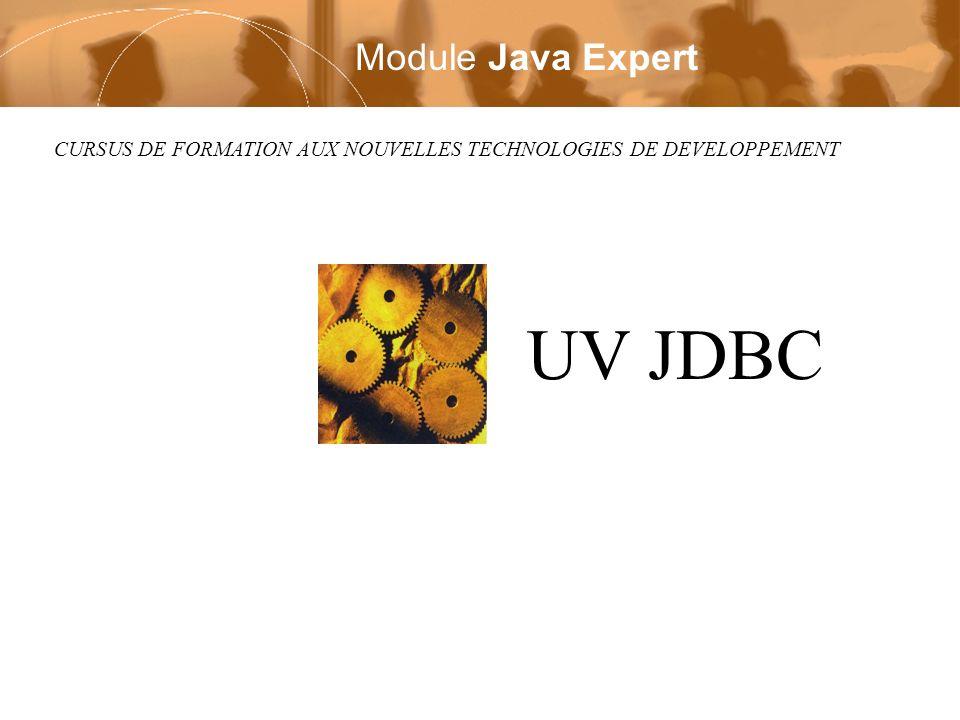 Module UV Java Page 32 / 54 Deruelle Laurent Copyright © 2002 Laurent Deruelle ResultSet n Il se parcourt itérativement ligne par ligne –par la méthode next() retourne false si dernier tuple lu, true sinon chaque appel fait avancer le curseur sur le tuple suivant initialement, le curseur est positionné avant le premier tuple –exécuter next() au moins une fois pour avoir le premier while(rs.next()) {// Traitement de chaque tuple}
