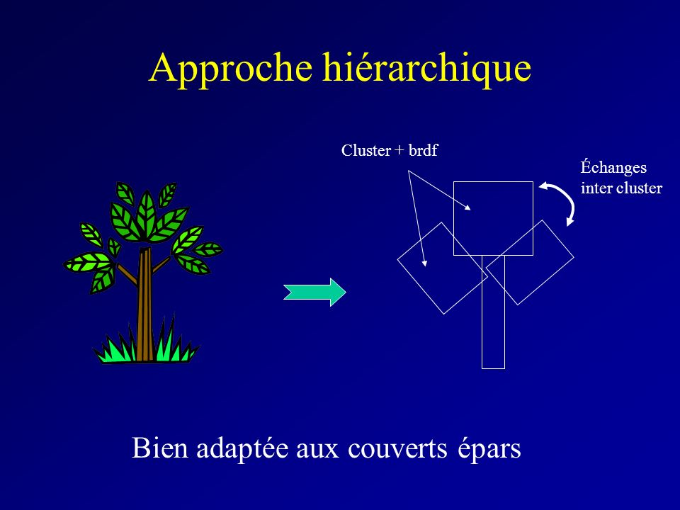 Approche hiérarchique Bien adaptée aux couverts épars Échanges inter cluster Cluster + brdf