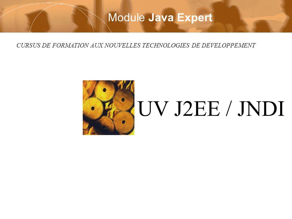 CURSUS DE FORMATION AUX NOUVELLES TECHNOLOGIES DE DEVELOPPEMENT UV J2EE / JNDI Module Java Expert