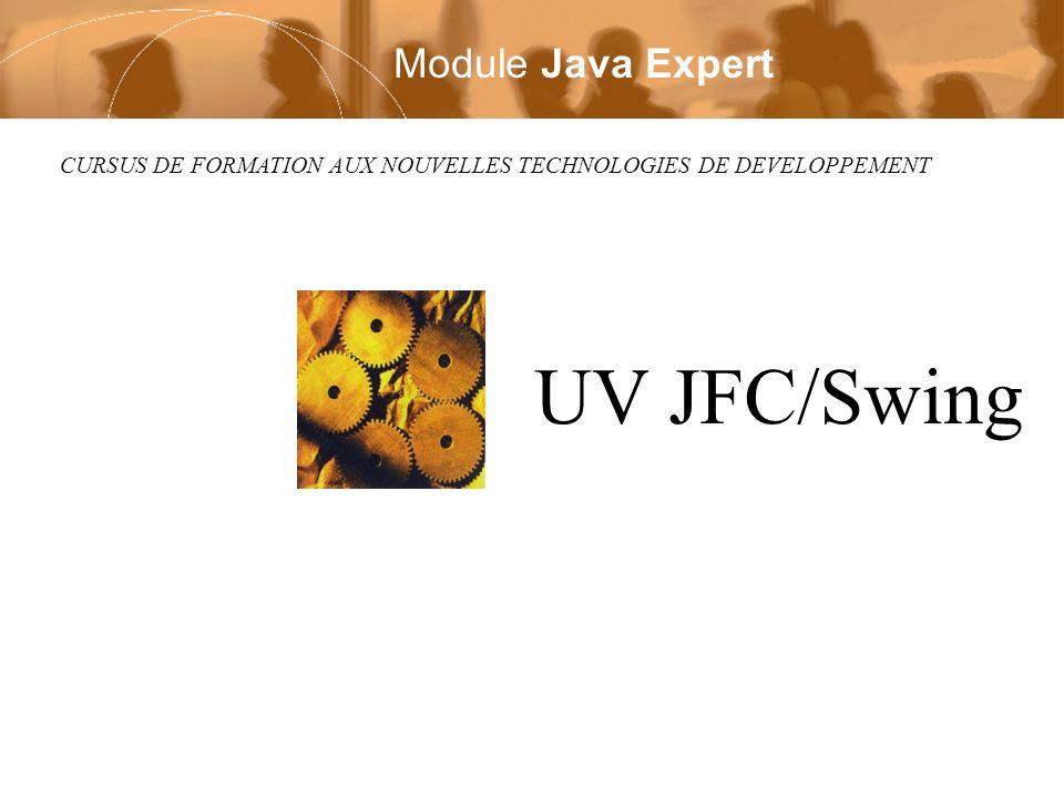 CURSUS DE FORMATION AUX NOUVELLES TECHNOLOGIES DE DEVELOPPEMENT UV JFC/Swing Module Java Expert