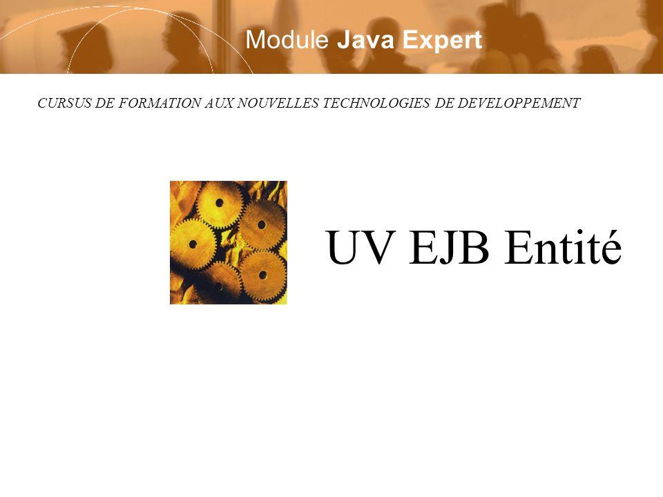CURSUS DE FORMATION AUX NOUVELLES TECHNOLOGIES DE DEVELOPPEMENT UV EJB Entité Module Java Expert
