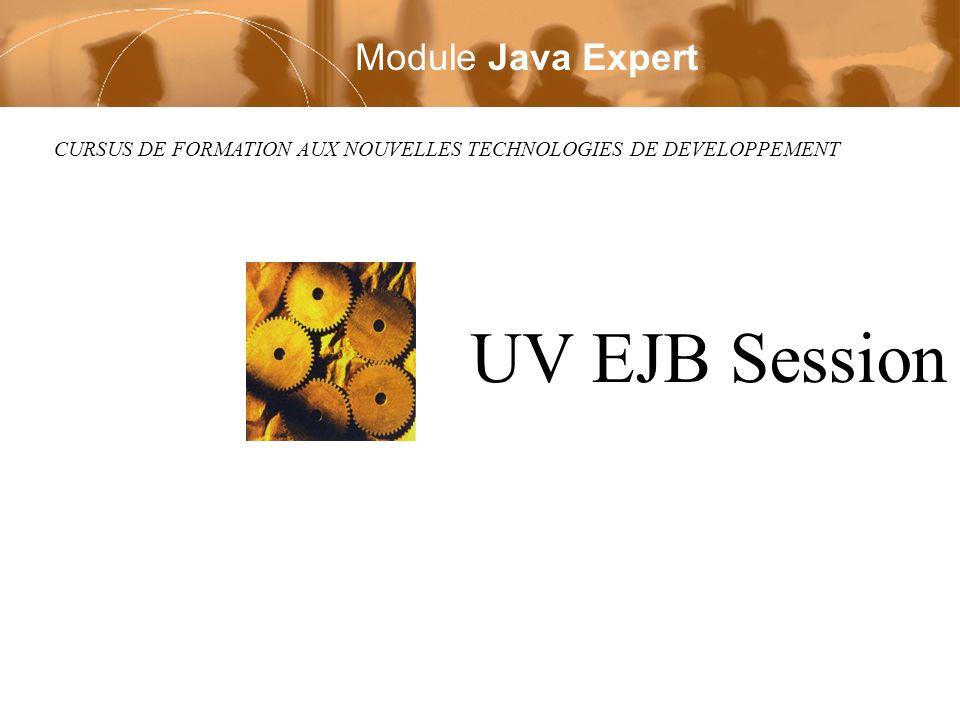 CURSUS DE FORMATION AUX NOUVELLES TECHNOLOGIES DE DEVELOPPEMENT UV EJB Session Module Java Expert
