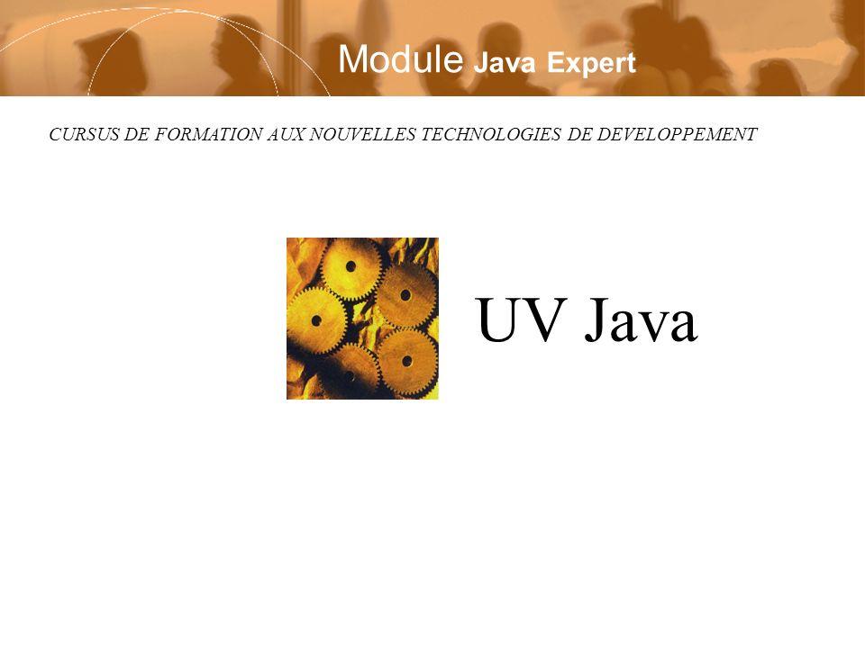 CURSUS DE FORMATION AUX NOUVELLES TECHNOLOGIES DE DEVELOPPEMENT UV Java Module Java Expert