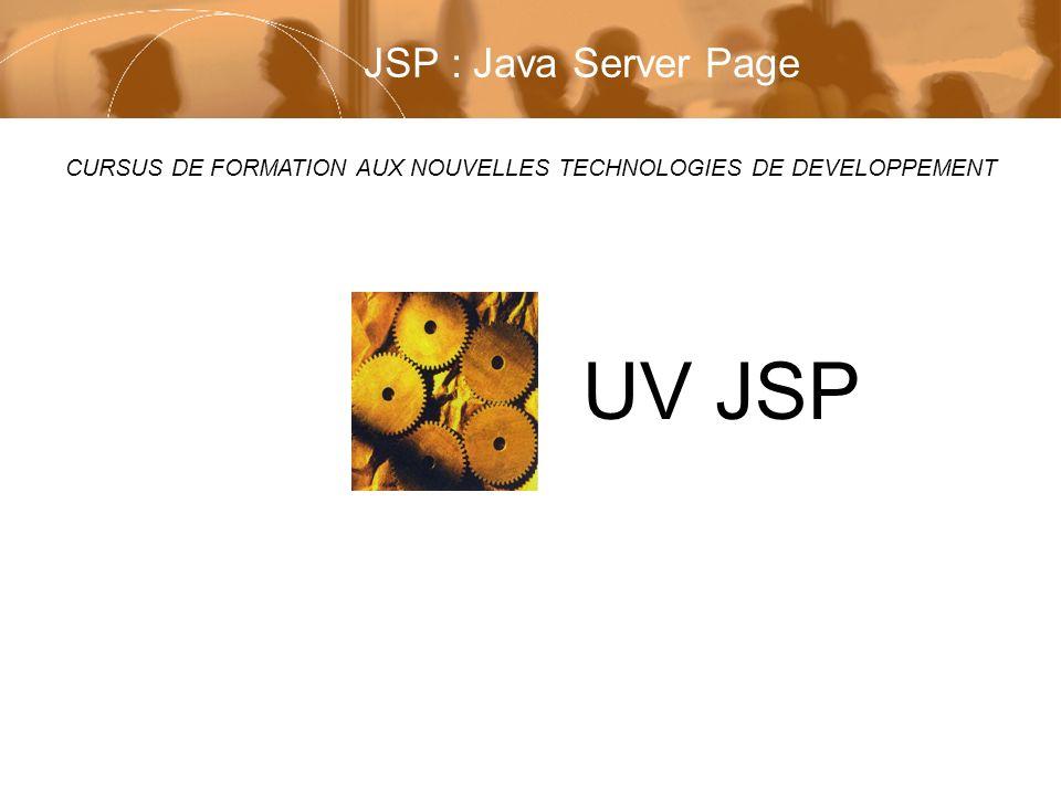 Module UV JSP Page 32 / 59 Deruelle Laurent Copyright © 2002 Laurent Deruelle Passons à la pratique n Certaines règles générales s appliquent aux pages JSP –les balises JSP sont sensibles à la casse –les directives et les éléments de script obéissent à une syntaxe qui ne repose pas sur XML (une syntaxe de type XML peut également être utilisée) –les valeurs des attributs dans les balises apparaissent toujours entre guillemets –les URLs présentes dans les pages JSP respectent les conventions de la servlet –si une URL commence par /, nomme chemin relatif de contexte, elle est interprétée en fonction de l application Web à laquelle la JSP appartient, sinon elle est interprétée en fonction du code JSP courant