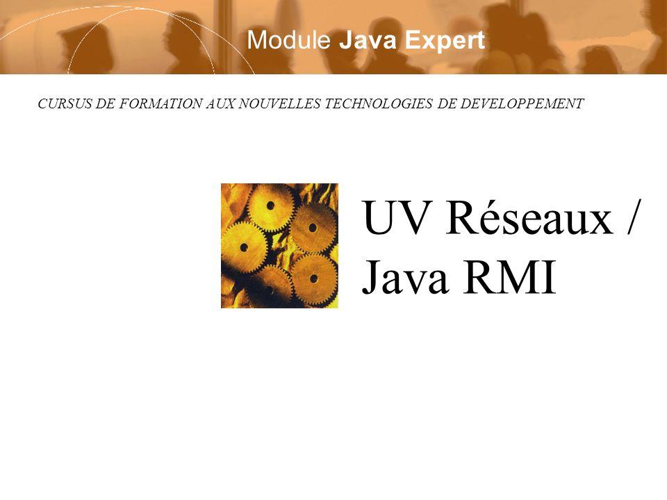 CURSUS DE FORMATION AUX NOUVELLES TECHNOLOGIES DE DEVELOPPEMENT UV Réseaux / Java RMI Module Java Expert