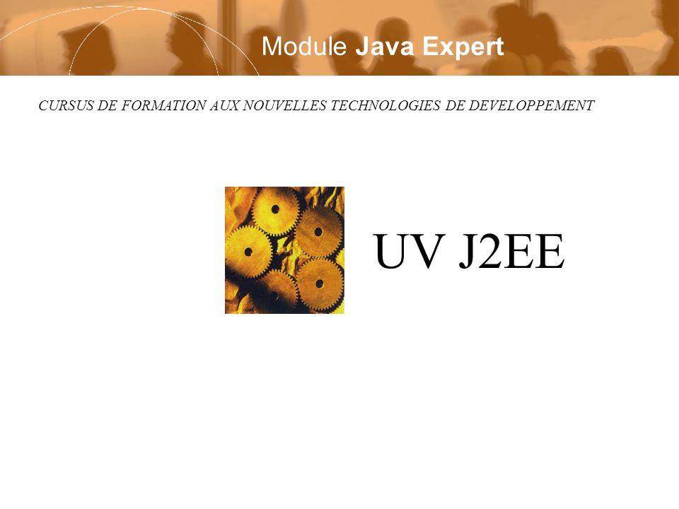 CURSUS DE FORMATION AUX NOUVELLES TECHNOLOGIES DE DEVELOPPEMENT UV J2EE Module Java Expert