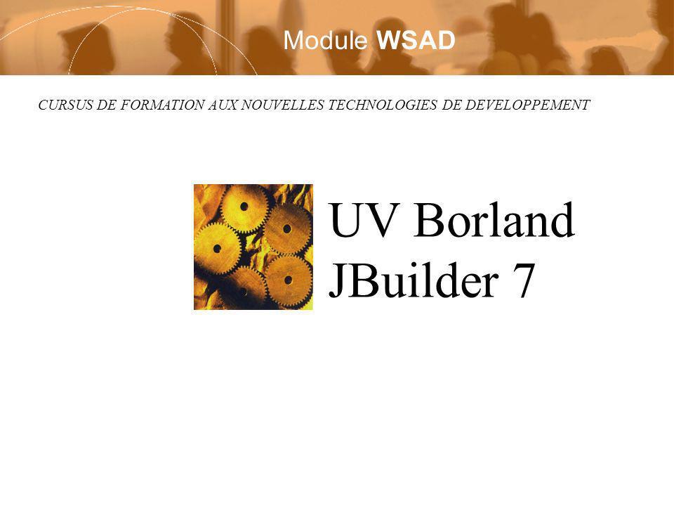 CURSUS DE FORMATION AUX NOUVELLES TECHNOLOGIES DE DEVELOPPEMENT UV Borland JBuilder 7 Module WSAD